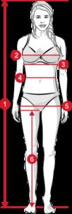 corps féminin parfait